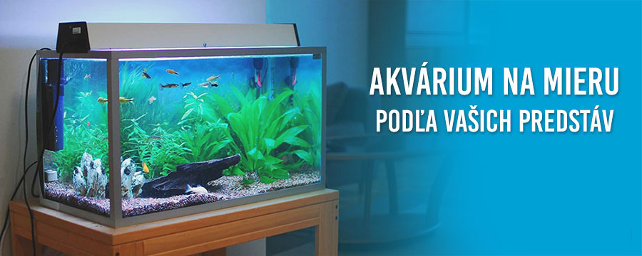 Akvarium na mieru