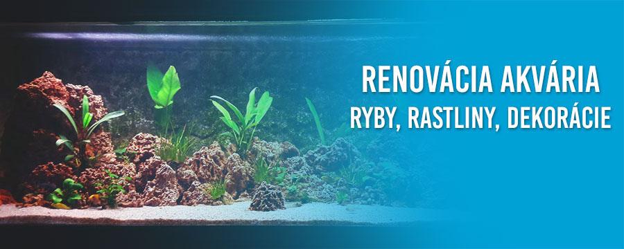 Renovacia a obnovenie akvarii