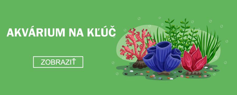 Akvárium-na-kľúč-akvablažo