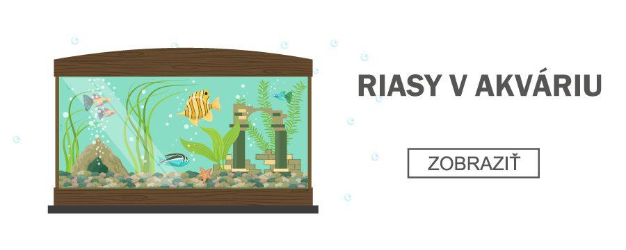 riasy-v-akváriu-akvablažo